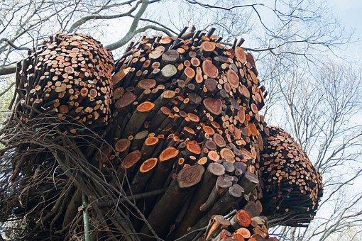 Sculpture, Art, Branches, Cut Ends, Arranged, Shaped