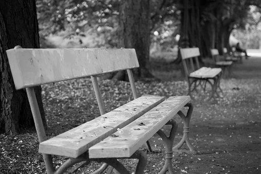 Bench, Park, Bokeh, Empty, Autumn, Abandoned, White