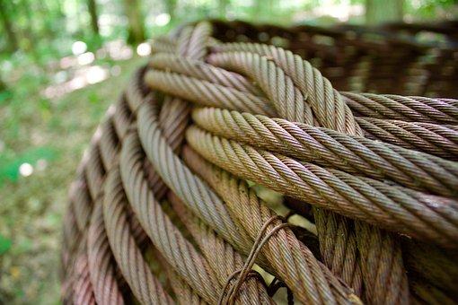 Cables, Basket, Forest, Art, Sculpture, Nature