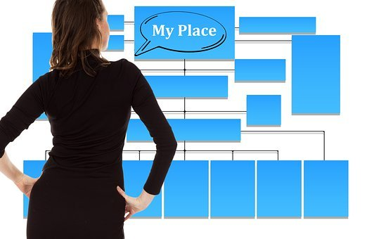 Businesswoman, Organization Chart, Organization, Space