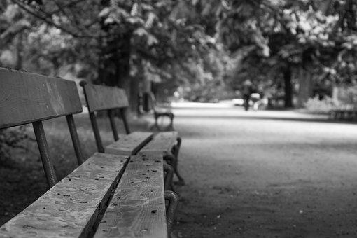 Bench, Park, Bokeh, Empty, Autumn, White, Black