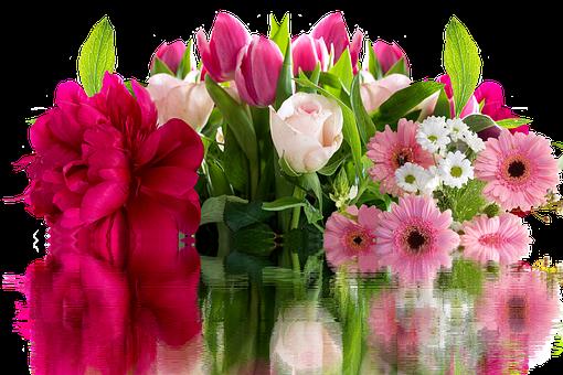Roses, Gerbera, Flowers, Blossom, Bloom, Bouquet, Pink