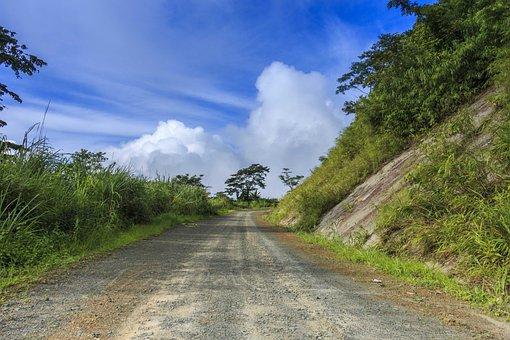 Path, Cloud, Tree, Landscape, Environment, Tourism