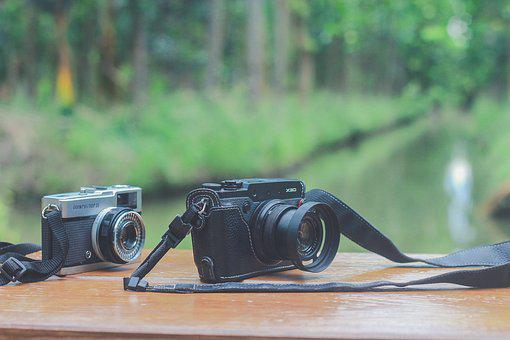The Camera, Camera Film, Nature, Lens Graphics, Garden