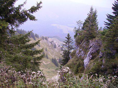 Greened, Mountain, Nature, Landscape, Bavaria, Alpine
