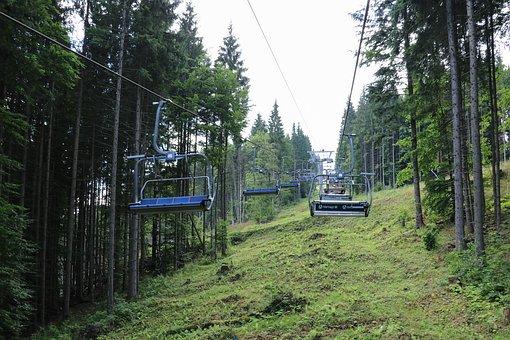 Ukraine, Travel, Woods, Green, Tourism, Landscape