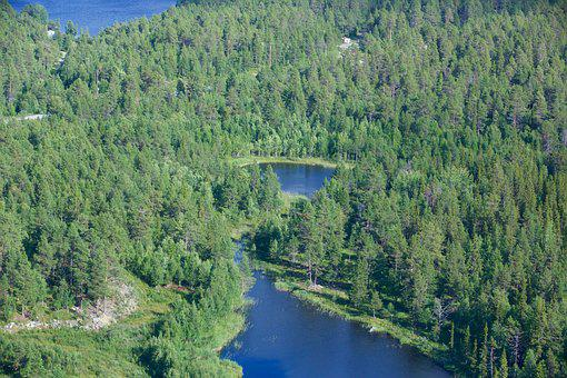 View Of Helicopter, River, Nature, Sweden, Landscape