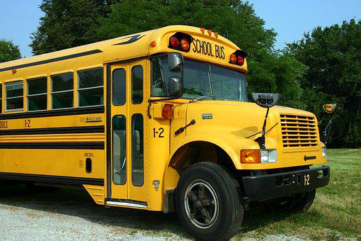 School Bus, Bus, Vehicle, Yellow, Transportation