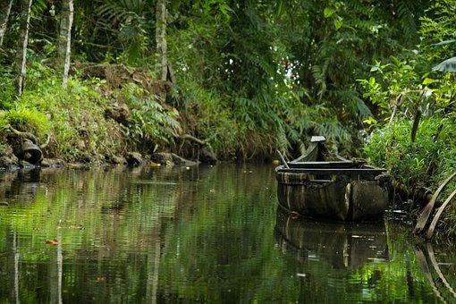 Old Boat, Water, Green, Transportation, Wooden Boat