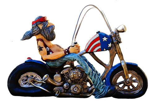 Biker, Bike, Tattooed, America, Cool, Casual, Funny