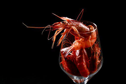 Shrimp, Food, Red, Nutrition, Healthy Eating, Fresh