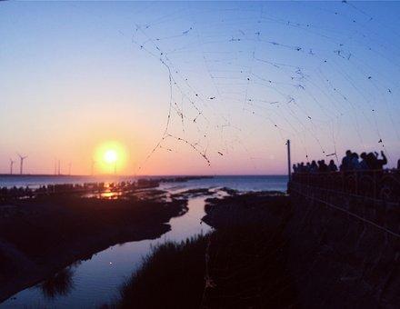Spider Web, The Evening Sun, Harbor, Winter, House