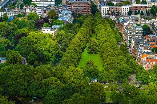 Park, Garden, City, Tree, Grass, Cityscape, Aerial View