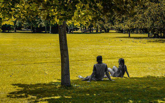 People, Sitting, Park, Green, Tree, Person, Lifestyle