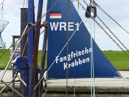 Shrimp, North Sea, Fishing Port, Northern Germany