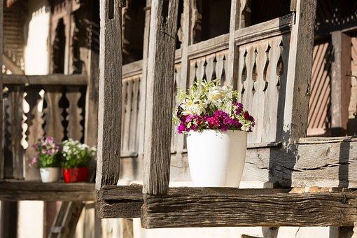 Flowers, Flowerpots, Green, Gardening, Garden, Pot