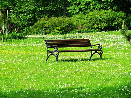 Bench, Park, Green, Flowers, Spacer, Rest, Relaxation