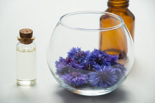 Cosmetic Oil, Cosmetology, Flowers, Knapweed