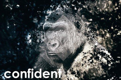 Confident, Self-conscious, Gorilla, Photoshop