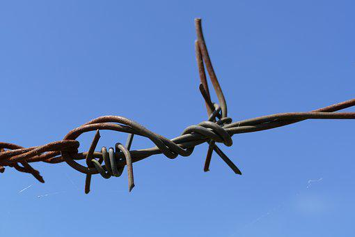 Barbed Wire, Knot, Sharp, Caught, Rust, Obstacle