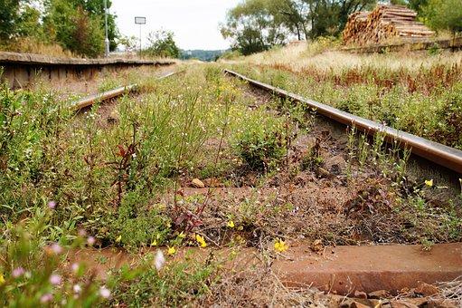 Track, Train Tracks, Railway, Railroad Tracks