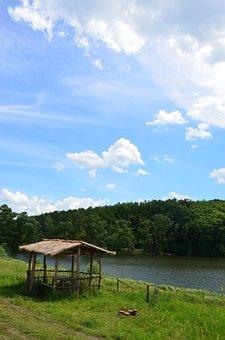 Gazebo, Reed, Pond, Slope, Forest, Water, Landscape