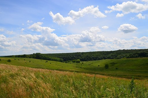 Nature, Yar, Forest, Fields, Clouds, Sky, Summer