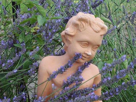 Garden, Lavender, Cherub, Lavender Flowers, Purple