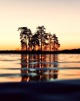 Sunset, Dusk, Trees, Silhouette, Lake, Water