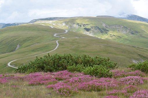 Alpine Road, Mountain Path, Mountain Top, Mountain Edge