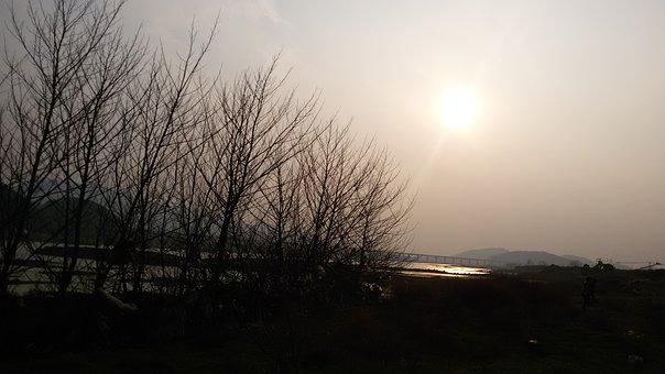 Riverside, Sunset, Twilight, Woods, Dusky