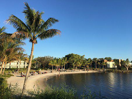 Club Med, Sandpiper Bay, Beach, River, Palm Tree, Coast