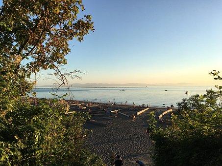 Beach, Hidden, Sunset, Trees, Water, Travel, Blue