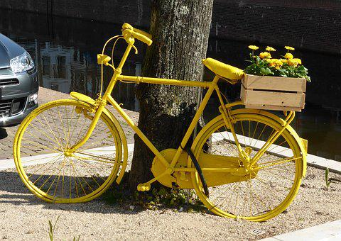 Transport, Bicycle, Spring, Yellow, Flowers, Chained