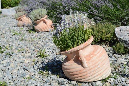Lavender, Jars, White Lavender, Gravel
