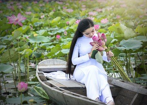Beauty, Boat, Charm, Charming, Cheerful, Cone