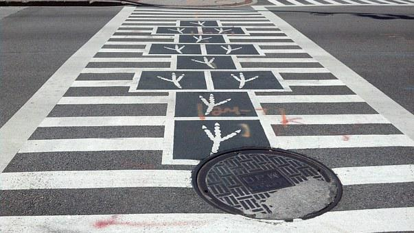 Bird Feet, Crossing, Walk, Crosswalk, Hopscotch, Street