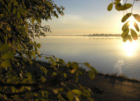 River, Dawn, Sun, Sky, Light, Beach, Leaves, Branch