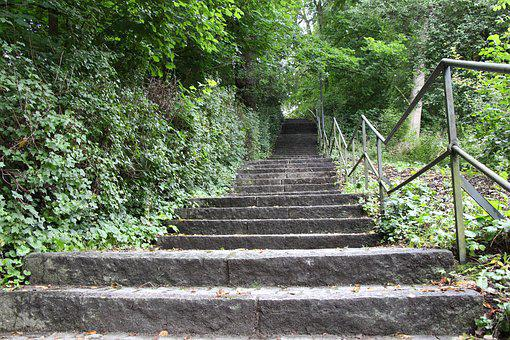 Stairs, Nature, Gradually, Landscape, Forest Path