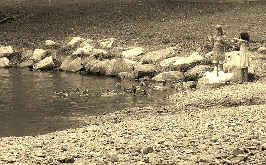 Lake, Geese, Girls, Children, Bird, Water, Pond, Summer