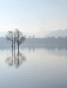 Reflection, The Water, The Morning Mist