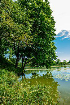Bychawa, Lagoon, Water, Rest, Lubelskie, Poland, View