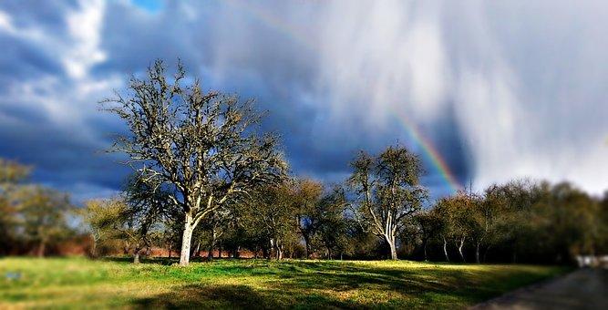 Landscape, Storm, Rain, Screen, The Sun, Clouds, Nature