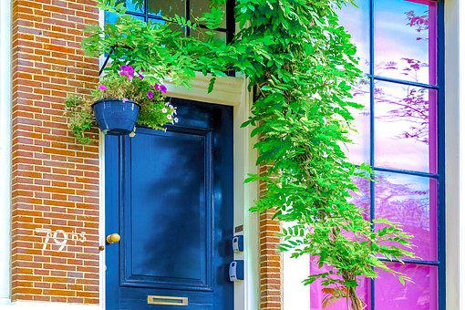 Home, House, Door, Window, Brick Wall, Plant, Colorful