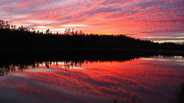 Sunset, Autumn, Finnish, In The Evening, Tree, Lake