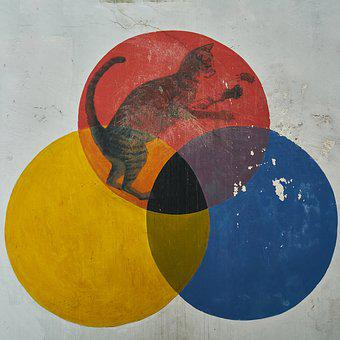 Color, Paint, Circle, Wall, Yellow, Blue, Red, Graffiti