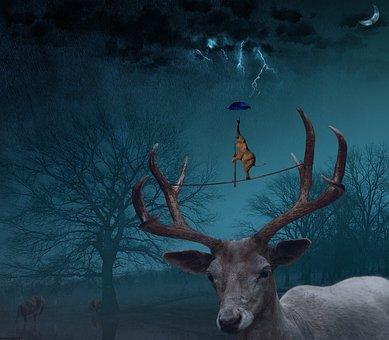 Deer, Elephant, Animal, Wild, Wildlife, Umbrella