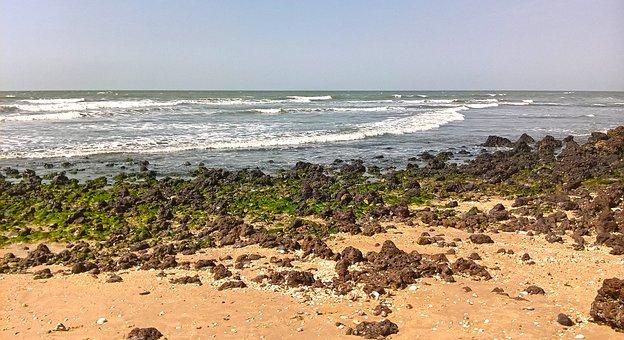 Beach, Stoney Beach, Tropical, Coast, Water, Shore