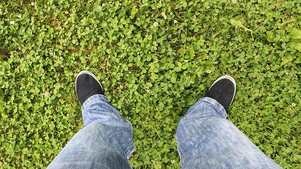 Standing On The Grass, Jeans, Clover, Grass, Blue Jeans