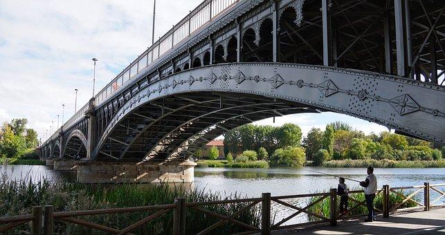 Man, Boy, Father, Son, Fishing, Bridge, River, Tormes